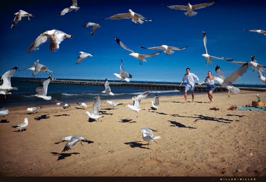 seagulls beach front photographs boardwalk