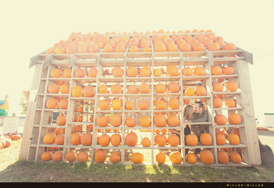 illinois-pumpkin-patch-engagement-chicago-photos