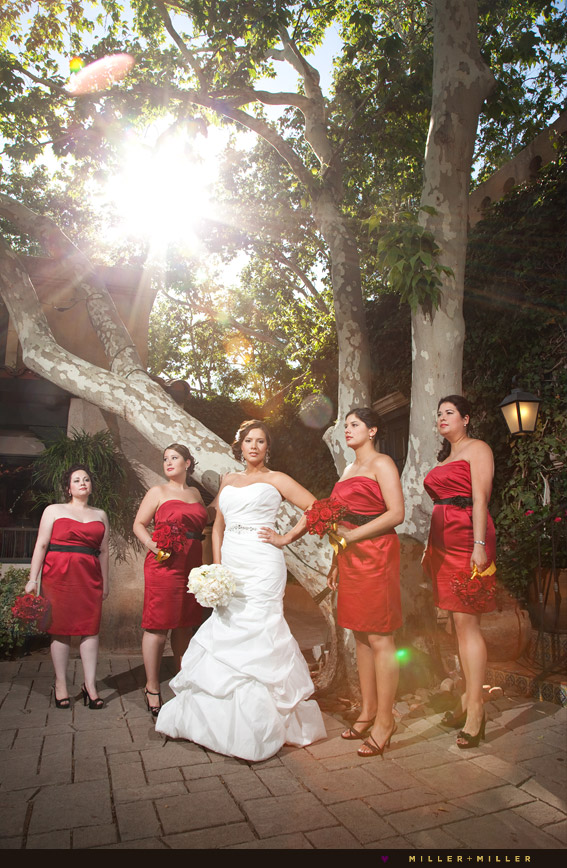 modern arizona wedding photographer
