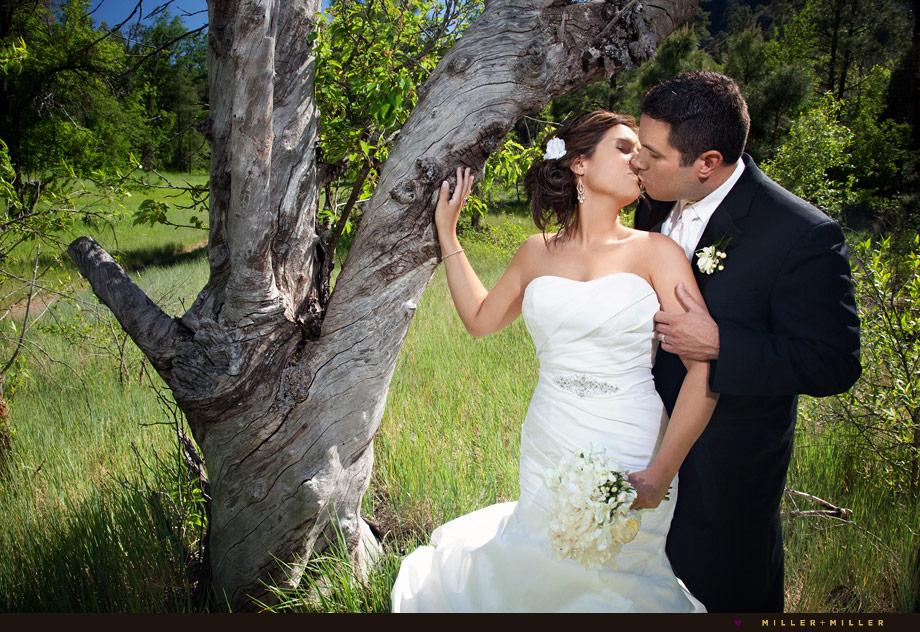 revamp trash the dress bridal portraits