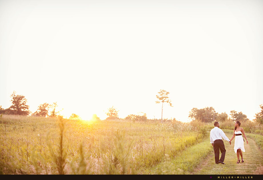 beautiful sunset meadow
