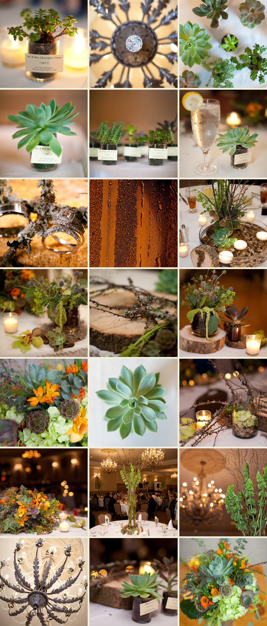 wood plants green centerpieces rustic earthy photos