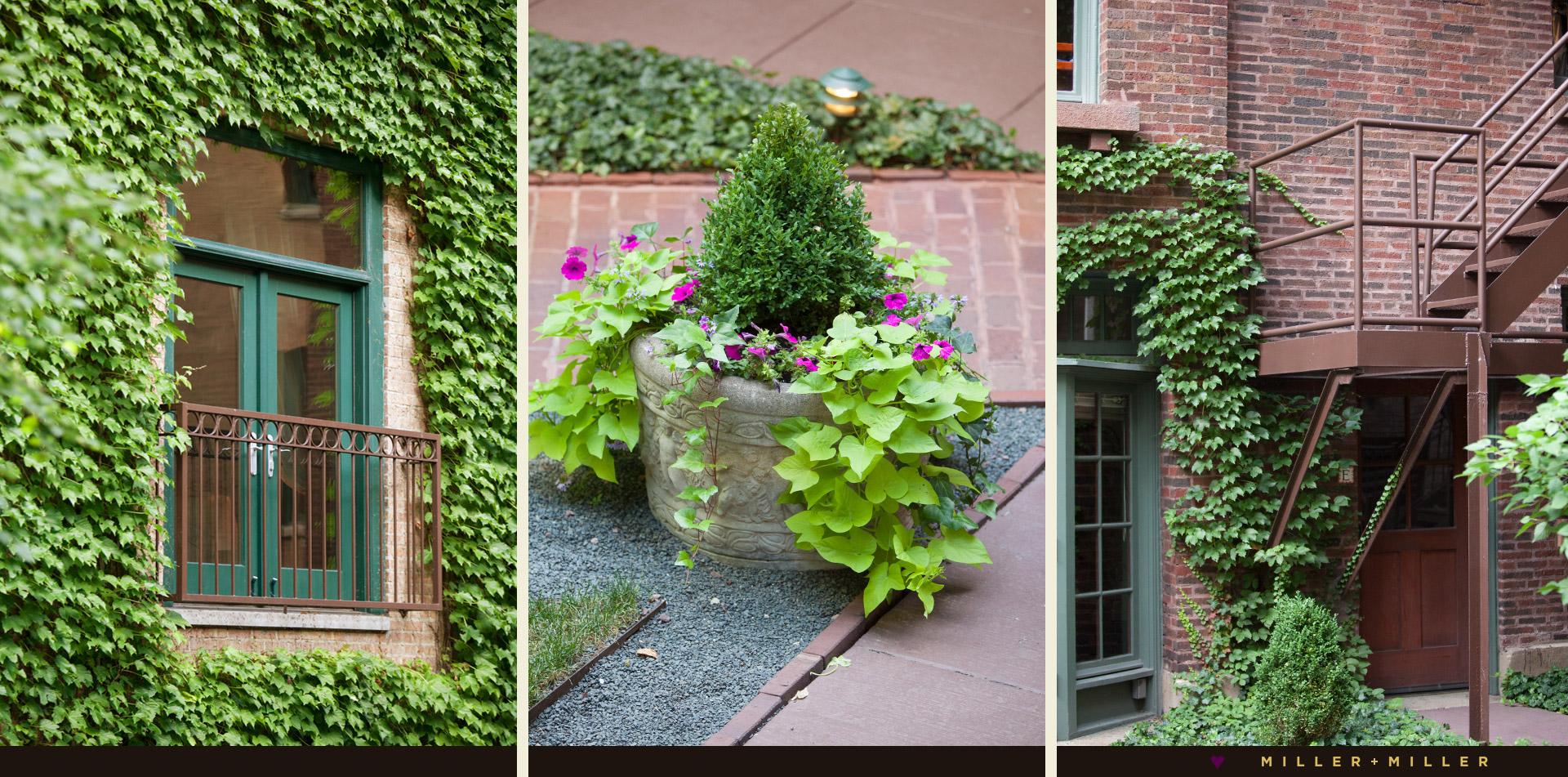 ivy room courtyard