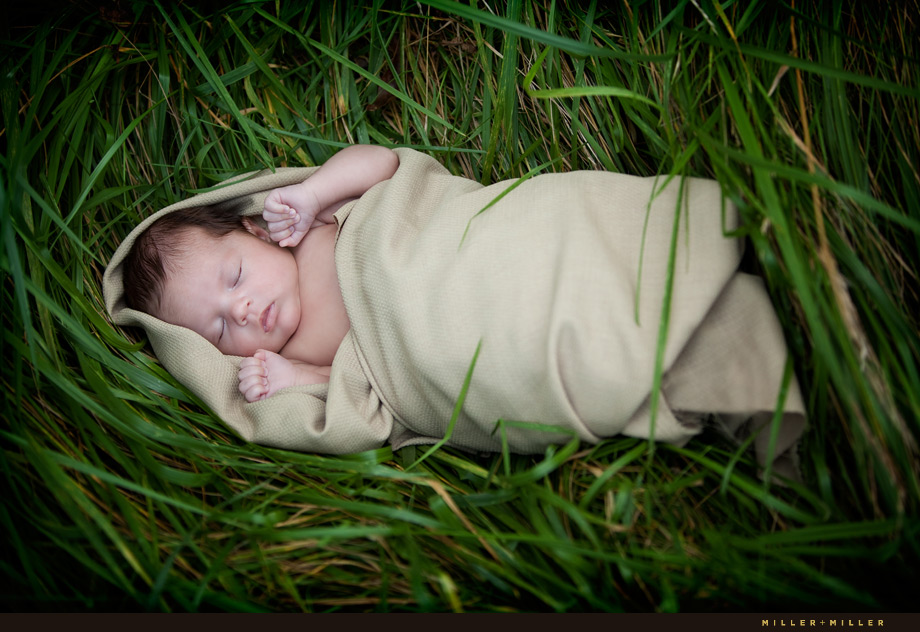 Newborn Photographer Naperville Il