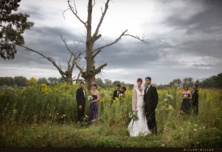 Amazing Wedding Photos Illinois
