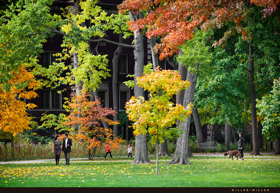 Illinois fall leaves couple-in-love image