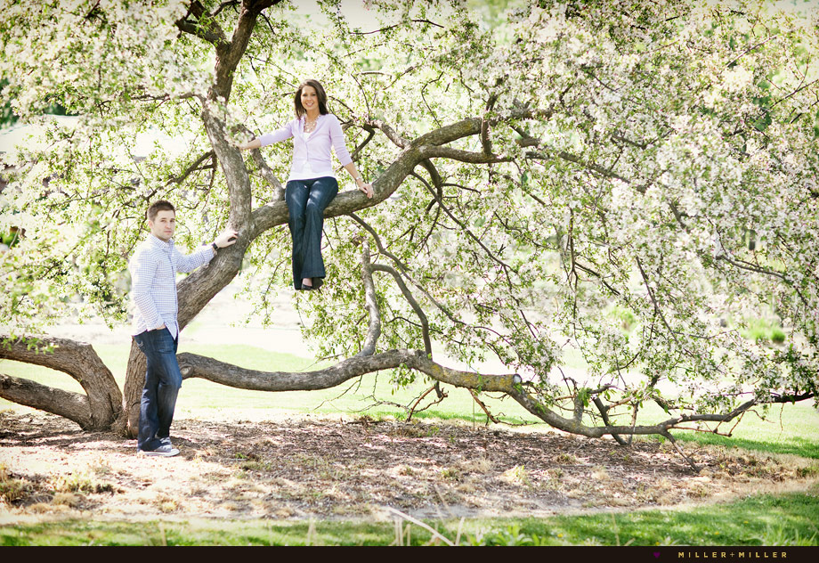 flowering tree engagement images elmhurst pics