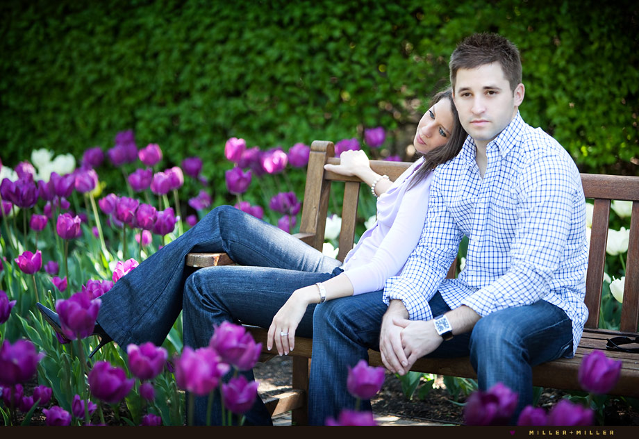 spring tulips park bench downers grove engagement
