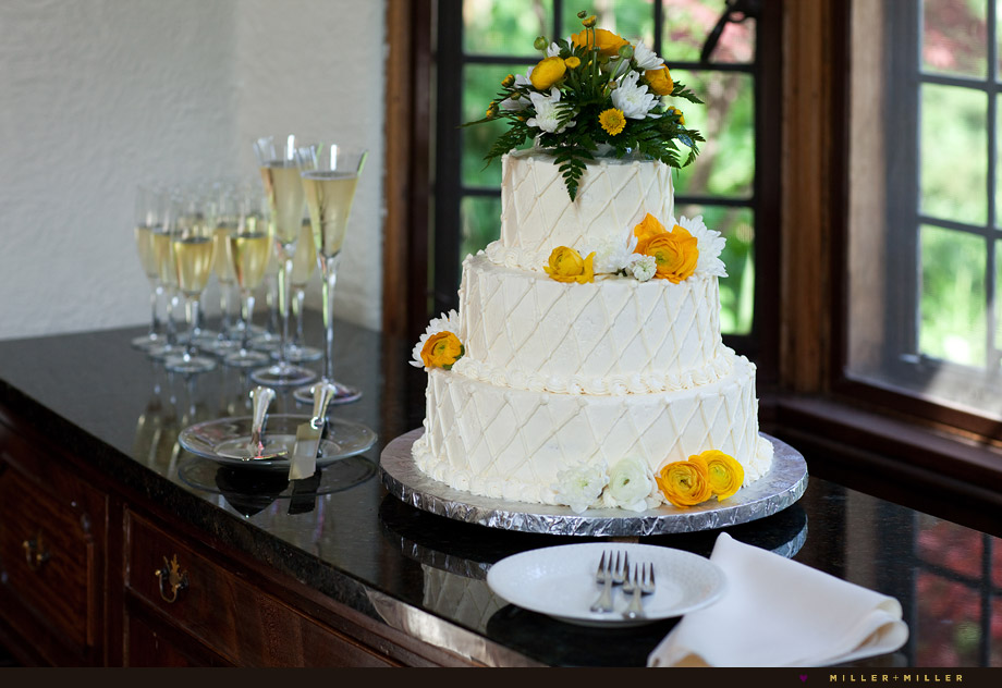 the best wedding cake photographer chicago