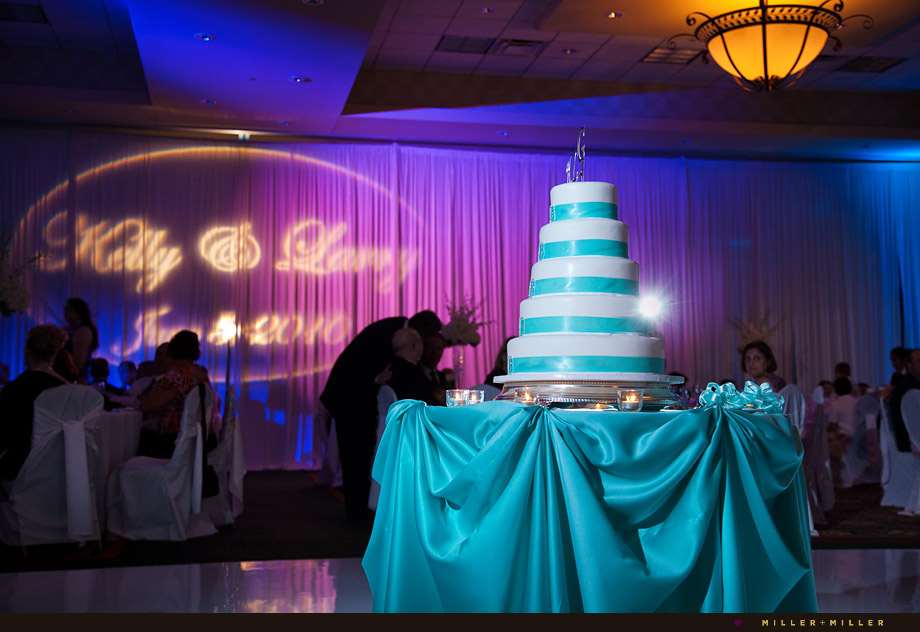 Chicago Wedding Cake