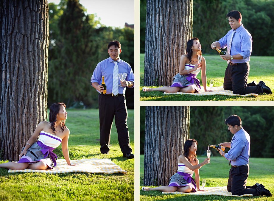 chicago engagement picnic photos