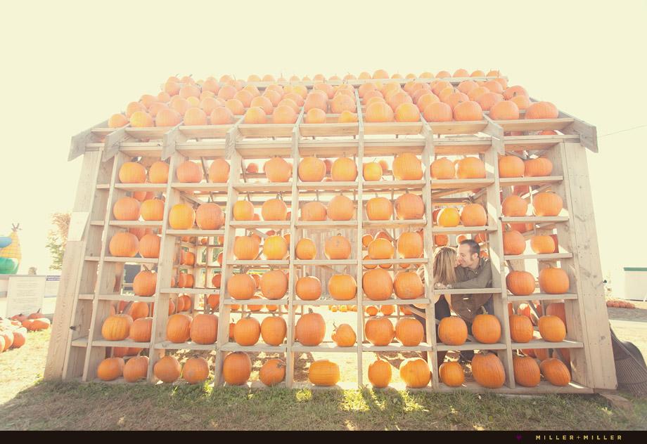 illinois-pumpkin-patch-engagement-chicago-photos