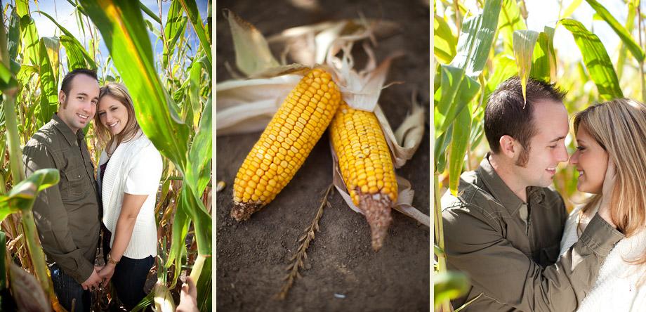 illinois summer fall engagement photography corn stalks