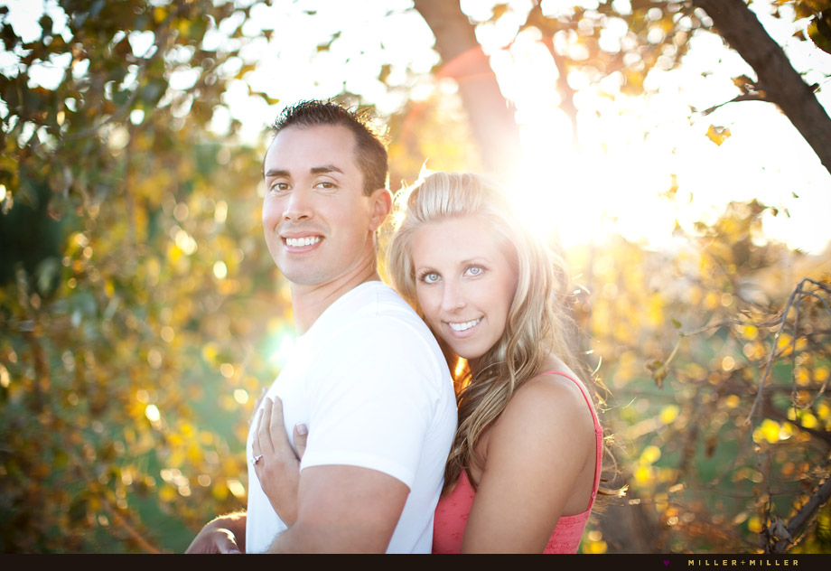 naperville engagement photographer