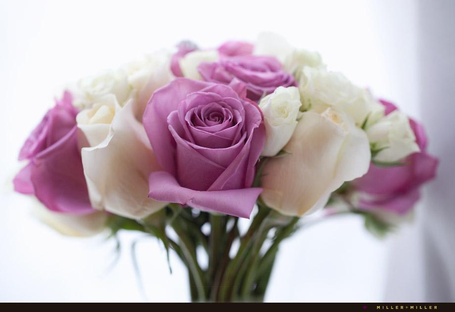pink white long stem roses