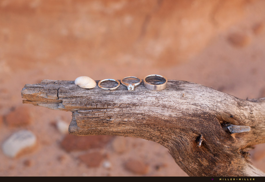 zion national park destination wedding