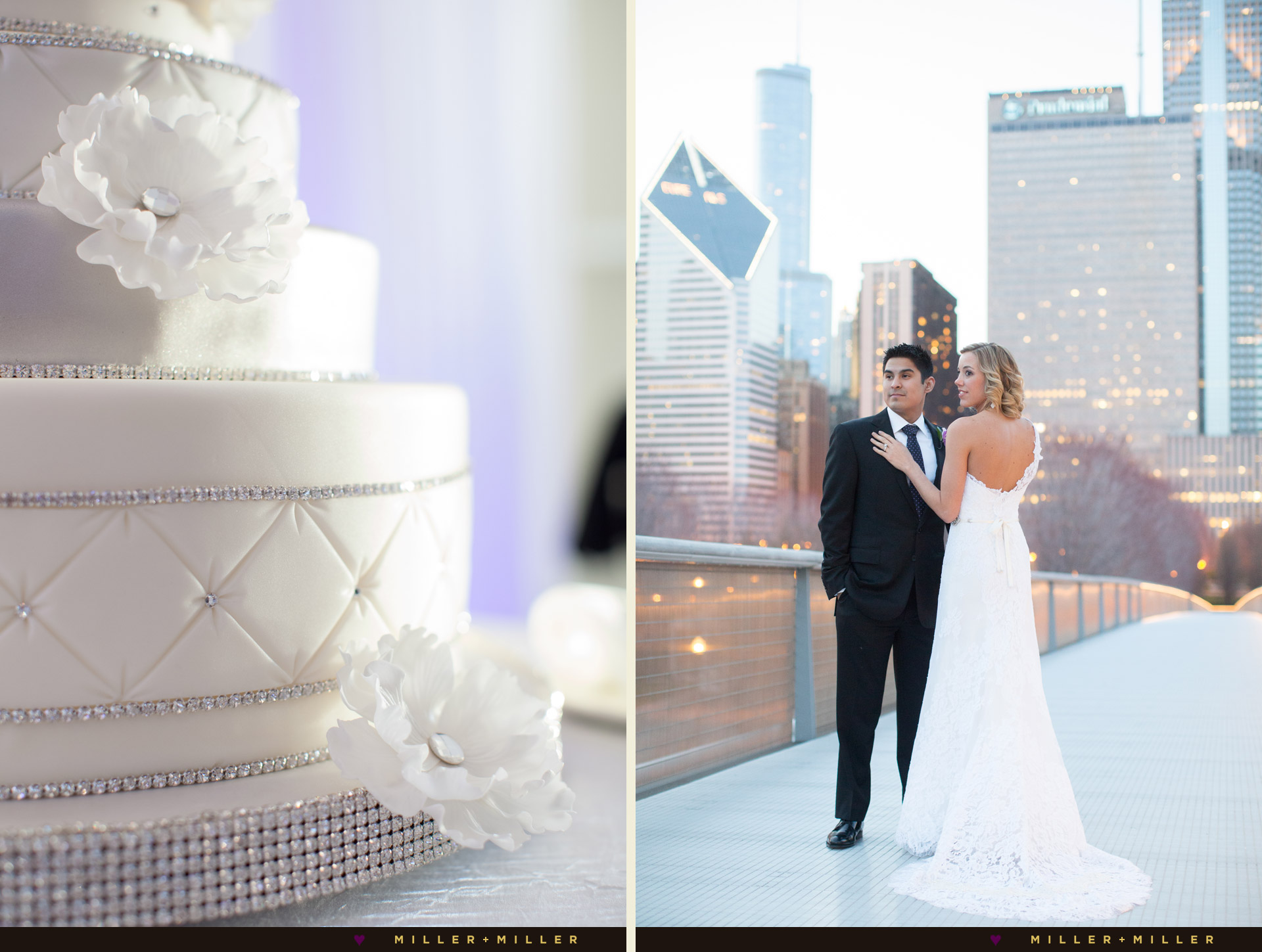 chicago-art-institute-modern-wing-nichols-bridgeway-wedding-photos